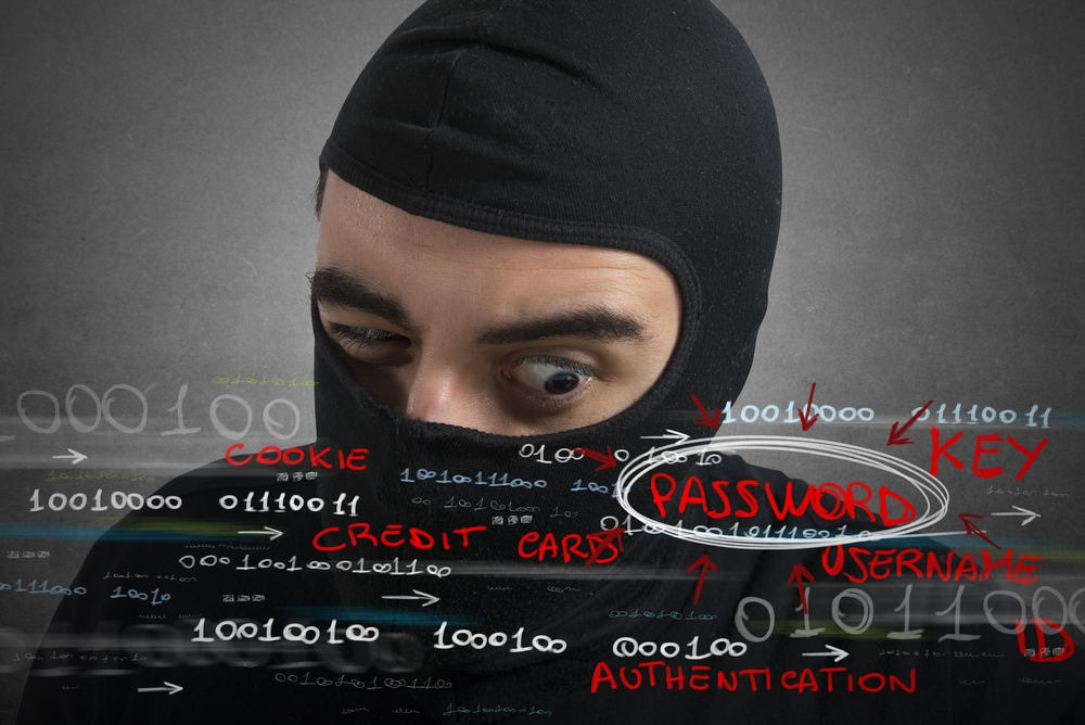 person stealing somebody's identity including passwords